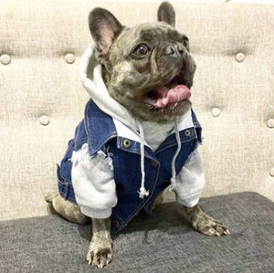 denim dog vest, denim dog jacket, dog gift
