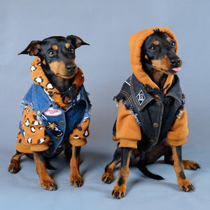 Denim dog vest, dog hoodie, dog coat, Pethaus, dog jacket, dog sweatshirt