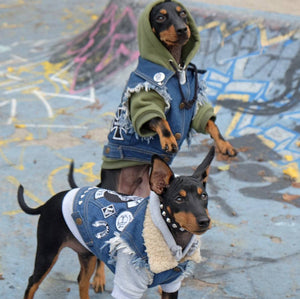 Heavy metal dogs, denim dog vest, dog battlejacket