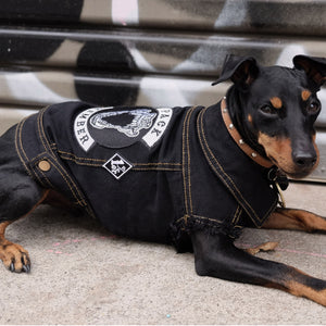 Pack Member Denim Dog Jacket by Pethaus