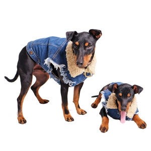 sherpa lined denim dog jacket
