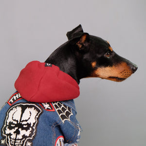 red dog hoodie and denim dog vest by Australia