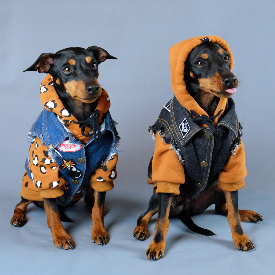 Cool dog hoodies for large and small dogs by Pethaus Australia