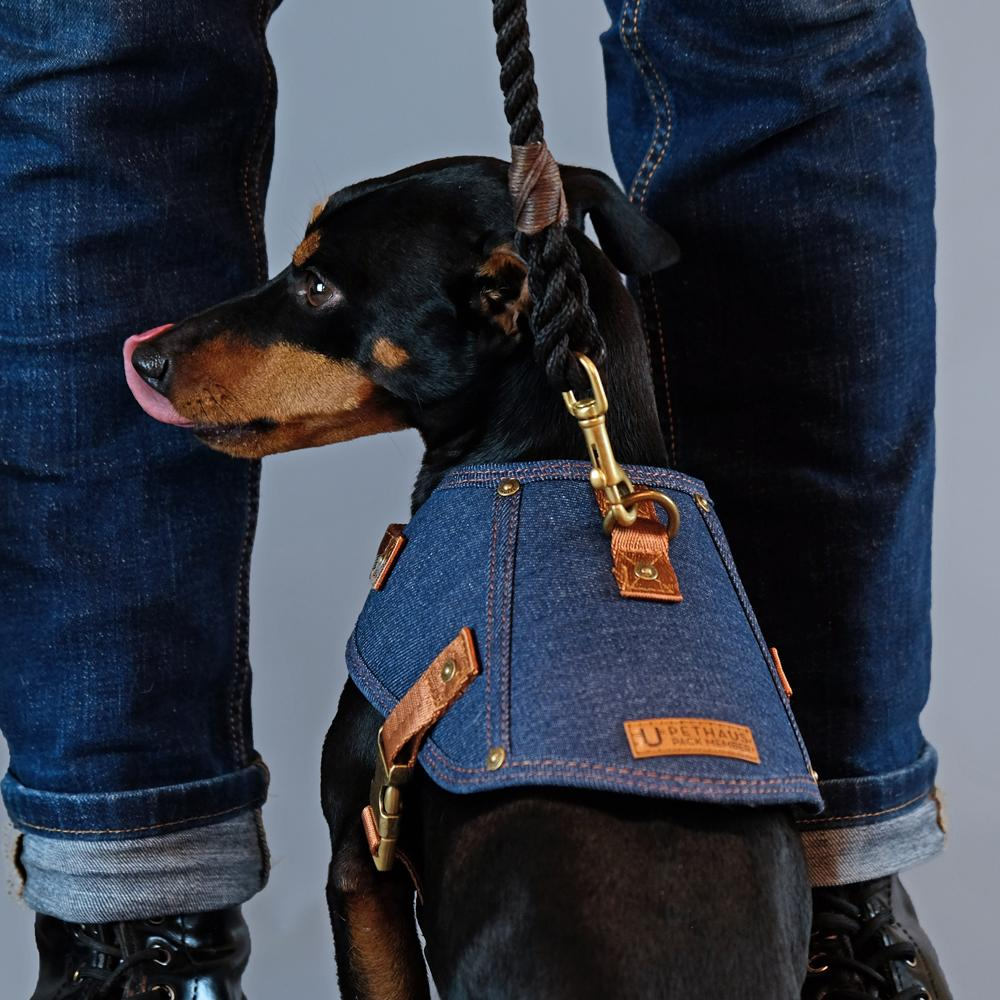 Dog harness - Battle Harness