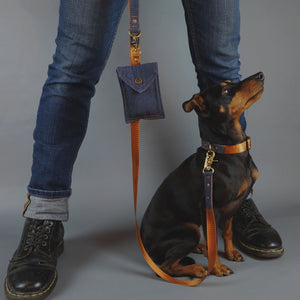 denim dog lead, denim dog leash, tan dog leash, design dog leash, Australia dog leash, Pethaus, cool dog leash, English toy terrier