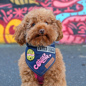 feminist patches, denim dog bandana