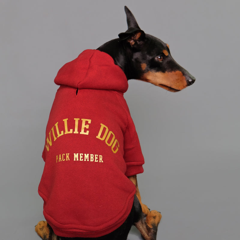 Team Player Personalised Dog Hoodie
