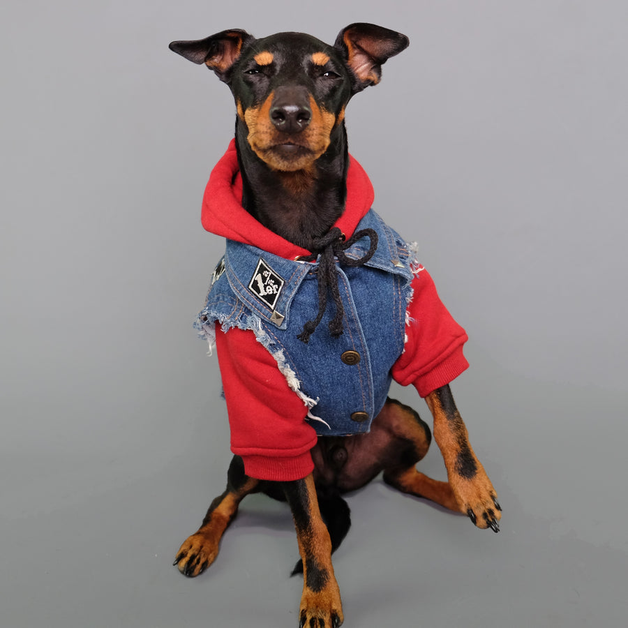 Denim dog vest and dog hoodies, dog streetwear by Pethaus Australia