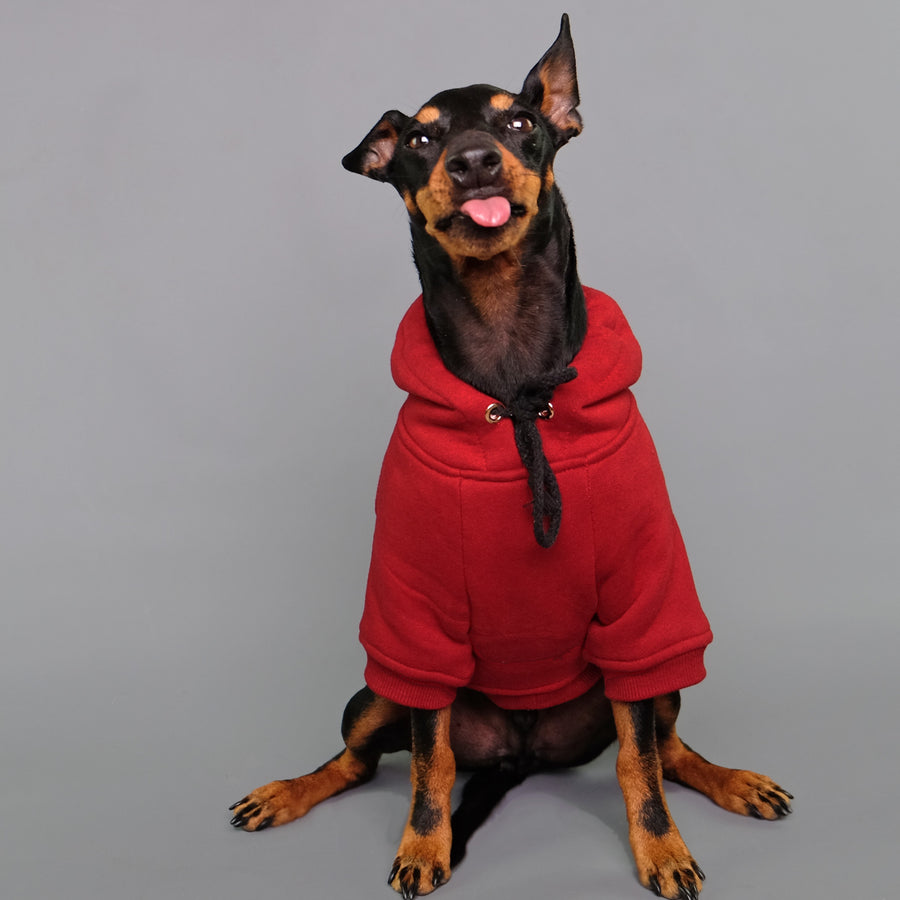 Red dog hoodie Australia by Pethaus