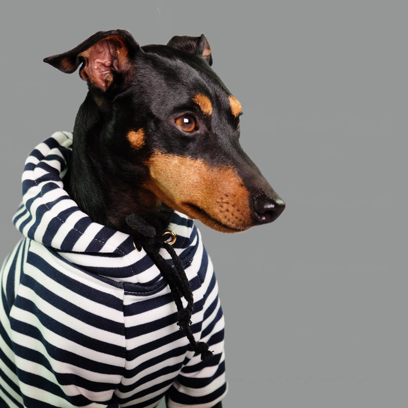 Best Mate Striped Dog Hoodie