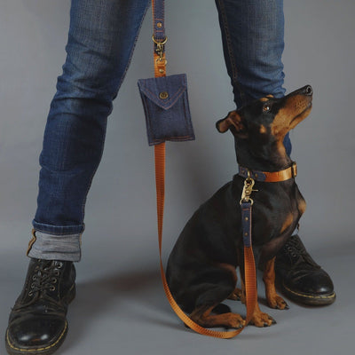 denim dog collar, denim dog leash, denim dog lead, designer dog collar, designer dog lead, dog poop bag holder, Australian dog collar and leash, designer dog walk wear, english toy terrier
