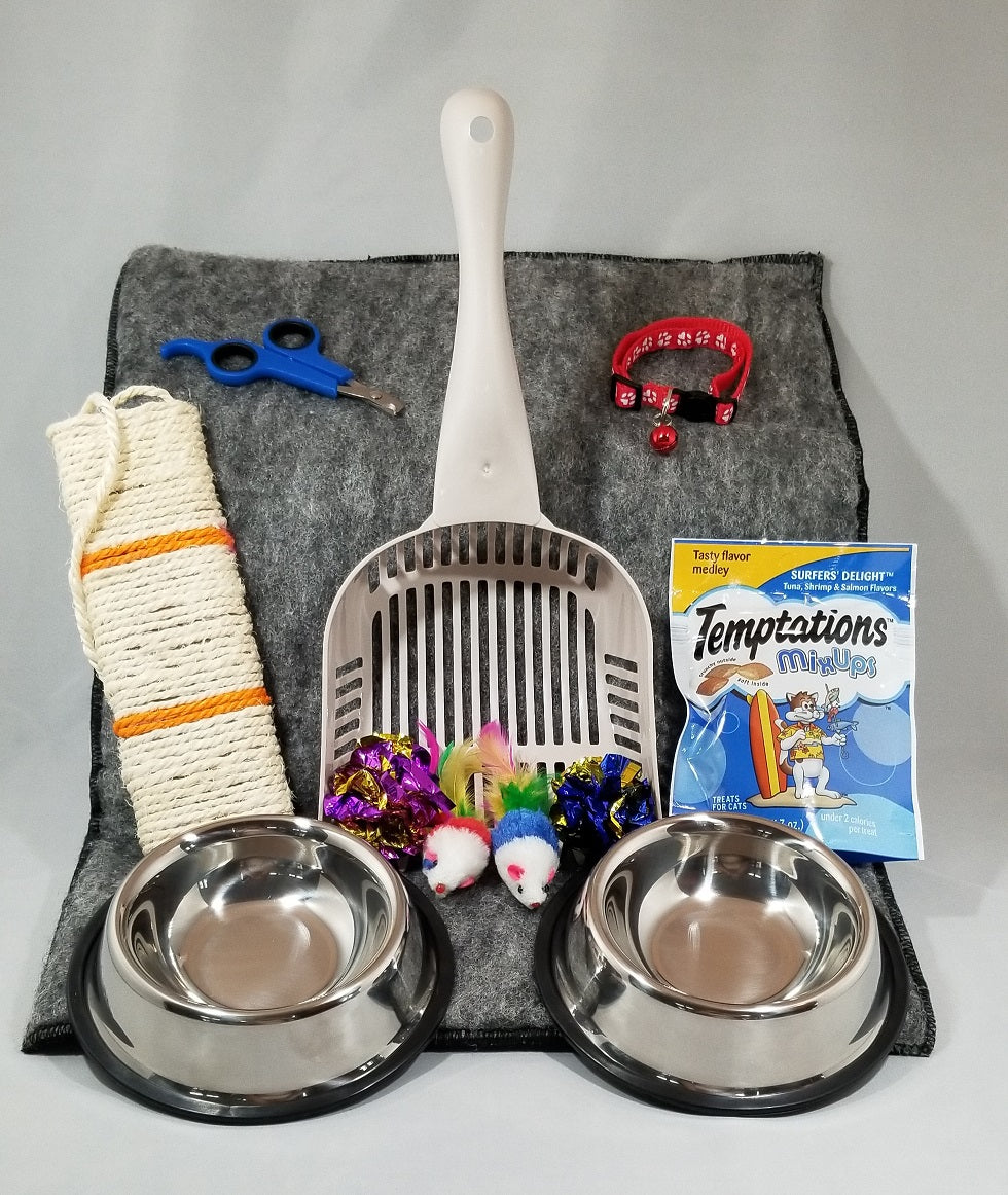 Cat Supplies Giveaway by toe beans