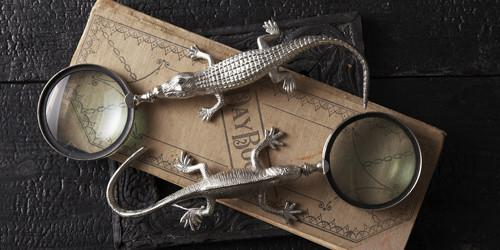 Lizard or Crocodile Magnifying Glass