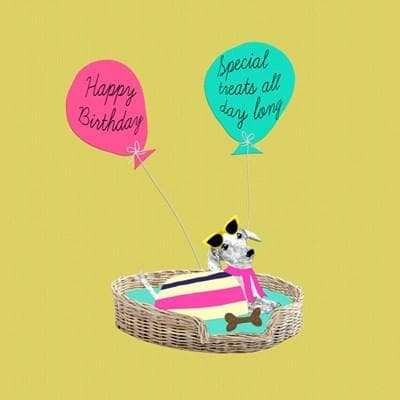 Dog birthday treats card - Aurina Ltd