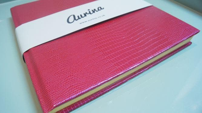 The Iguana Notebook - Aurina Ltd