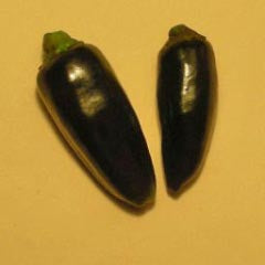 Czech Black Hot Pepper