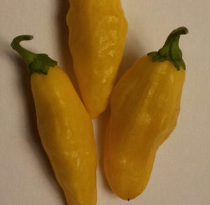 Aji Limon Hot Pepper