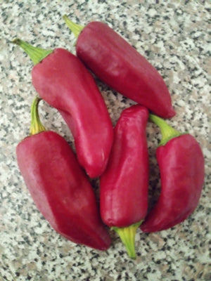 Sucette de Provence Hot Pepper