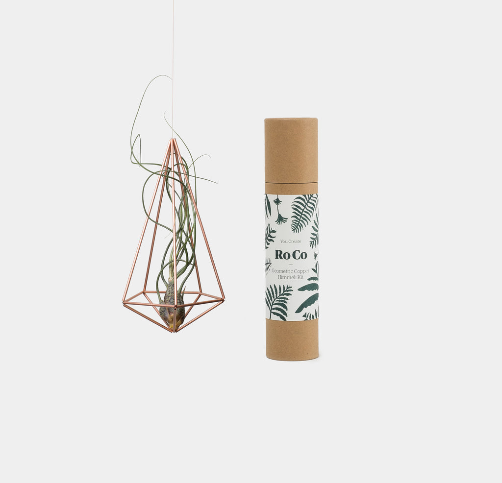 New Delivery from RoCo - Hanging planters,  air plants and copper kits