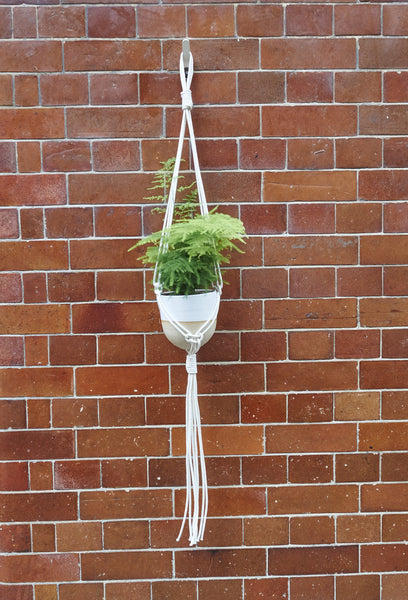 Pure Cotton Macrame hanging planter by RoCo