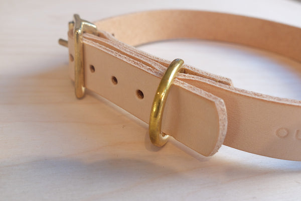 Outpost Leather and brass dog collar