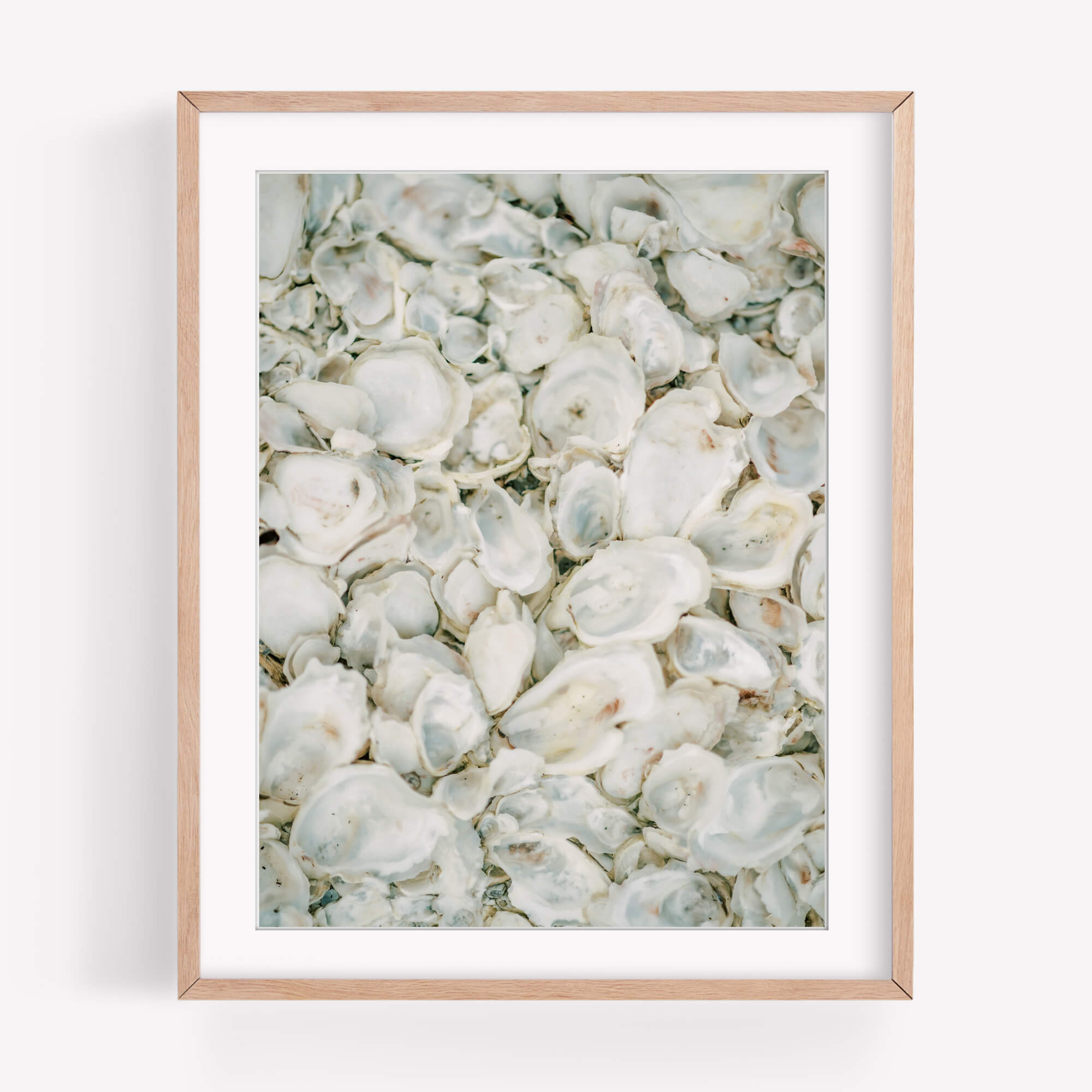Oysters Galore - Care Studio Prints
