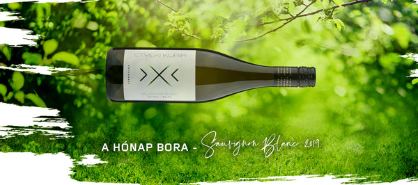 Wine of the Month, May 2021 Sauvignon Blanc 2019