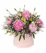 Amalia Sette Boxed Bloom