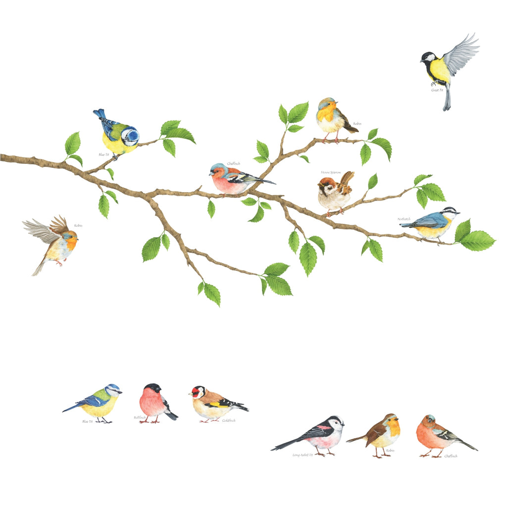 Garden Birds Wall Stickers