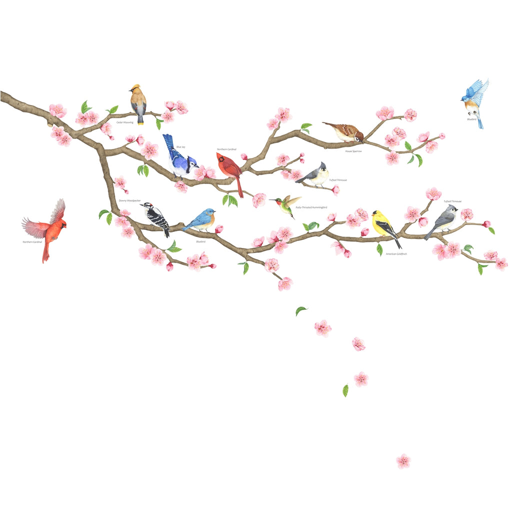 Garden Birds and Cherry Blossom Wall Stickers