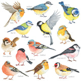 Little Birds Wall Stickers(Small)