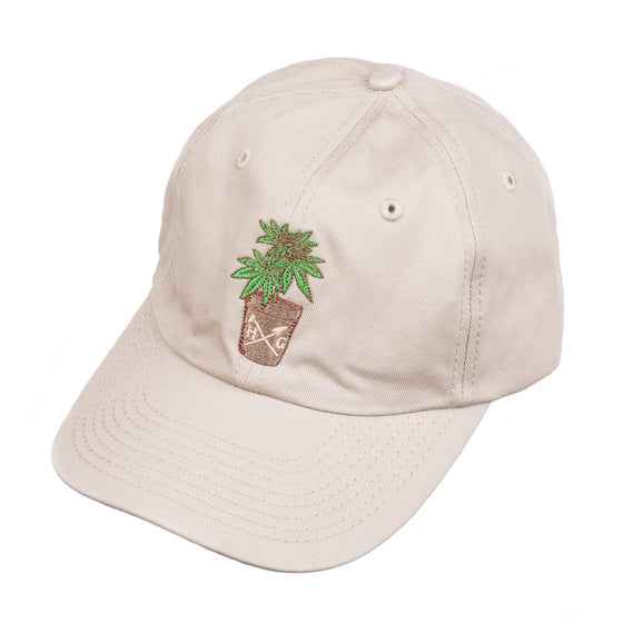 Where it all Started Dad hat - khaki