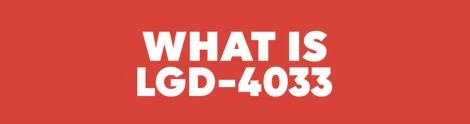 What Is LGD-4033