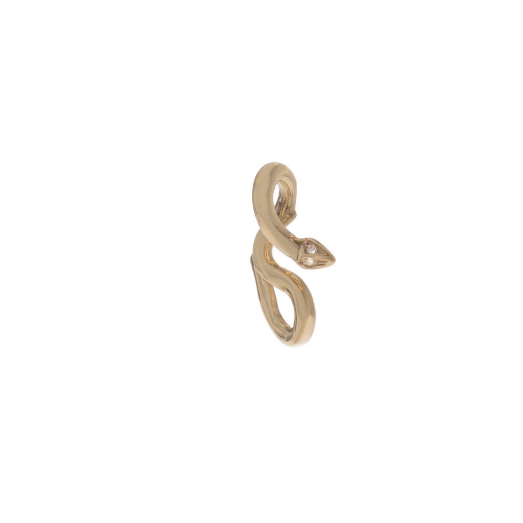 Diamond Snake Slide Charm