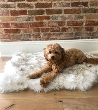Load image into Gallery viewer, Fluffle™ faux fur mat