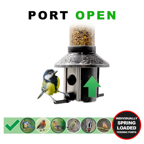 Roamwild PestOff Squirrel Proof Bird Feeder | Exclusive Premium Designs