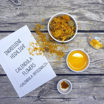 Ingredient Highlight - Calendula Officinalis [Marigold]