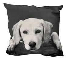 Load image into Gallery viewer, Monochrome Dog Cushion - Various Designs