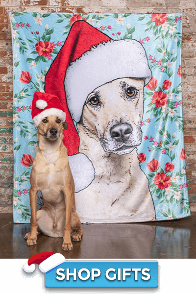 pop-your-pup-christmas-collection