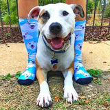 Custom Pet Art Socks
