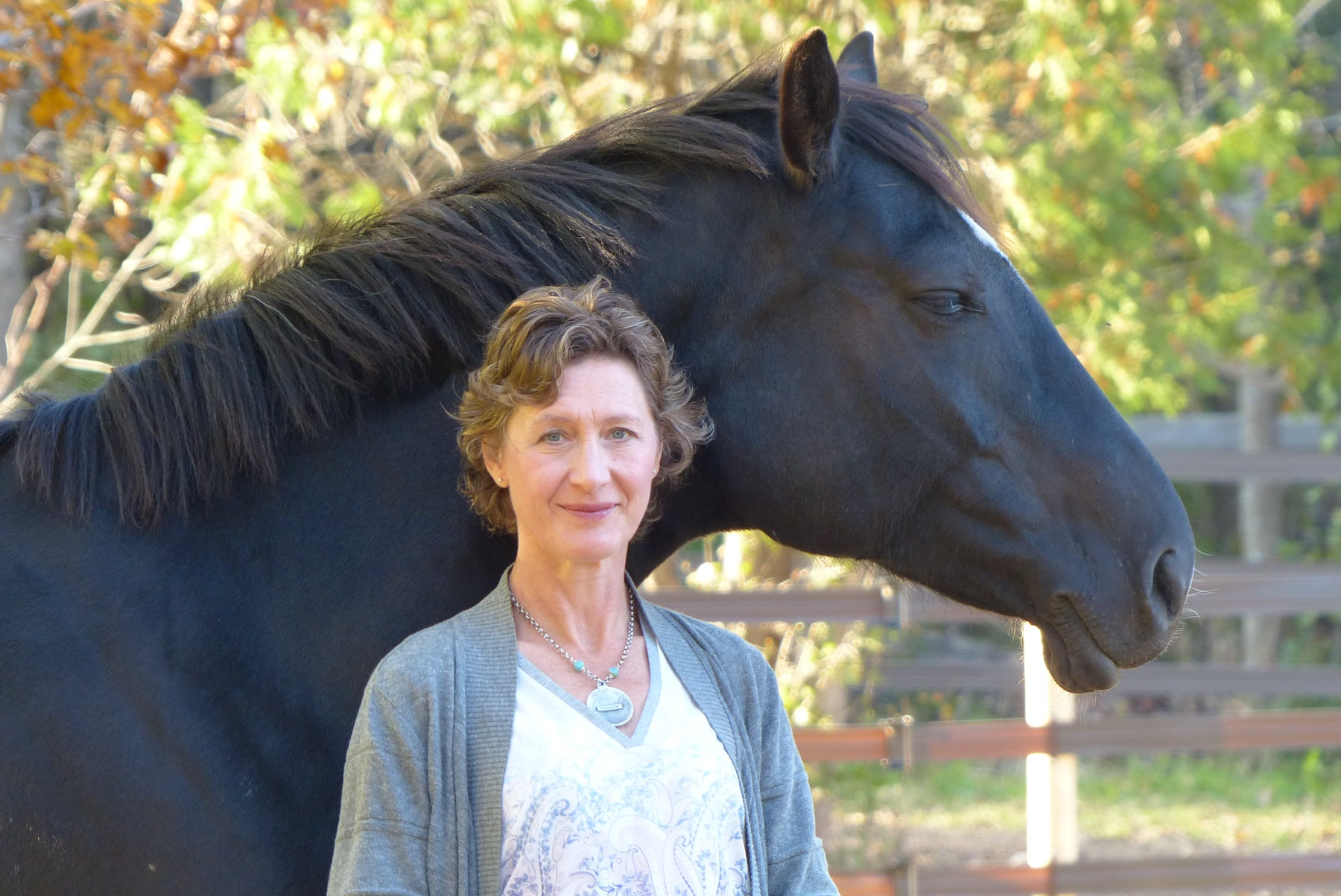 Dec 10:  A lesson from horses - Using boundaries to create presence