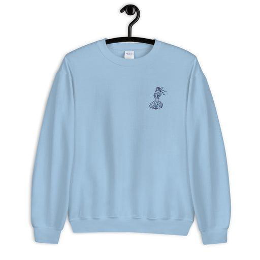 Venus sweatshirt with embroidery- blue, white, pink ♥