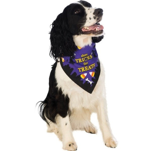 Tricks For Treats Pet Bandana - National Fur League