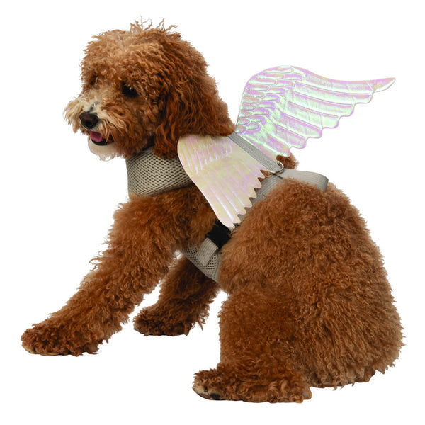 Angel Wings Pet Harness - National Fur League