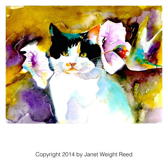 """Christeve the Cat with Hummingbird"" Cat Print by Janet Weight Reed"