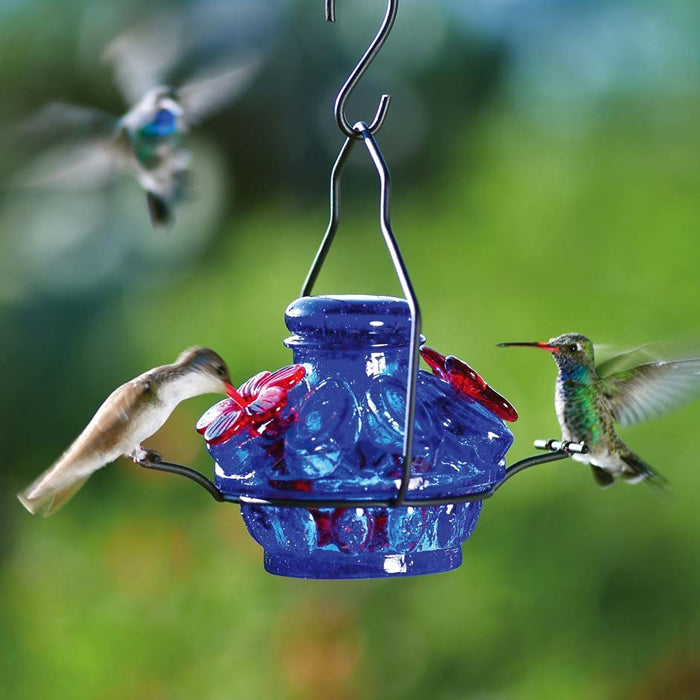 Pot de Crème™ Moon and Stars Hummingbird Feeder