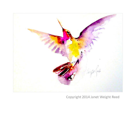 """Morning Light"" Hummingbird Print by Janet Weight Reed"
