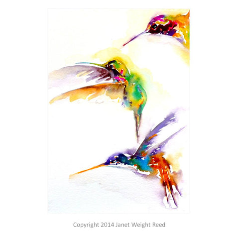 """Three on a Mission"" Hummingbird Print by Janet Weight Reed"