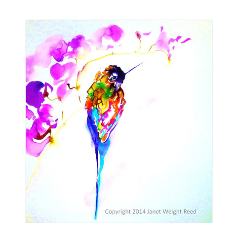 """Violet Perch"" Hummingbird Print by Janet Weight Reed"