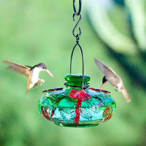 Bloom™ Calliope™ Hummingbird Feeder